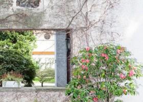 3-Italian-villa-exterior-design-by-Osvaldo-Borsani-stone-path-walkway-potted-pink-plant-flowers-Holy-Virgin-Maria-icon-in-the-garden