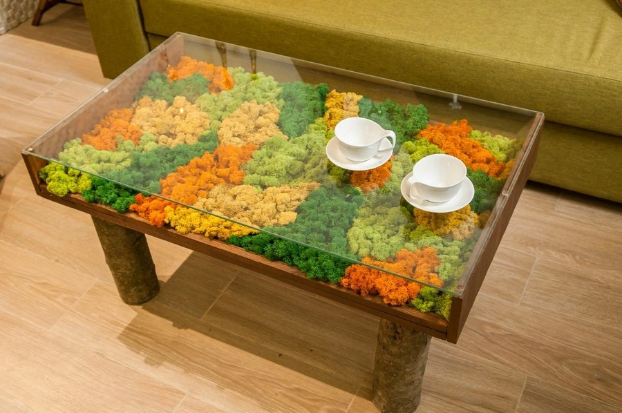 5-0-bright-green-yellow-orange-designer-coffee-table-whimmings-legs-tempered-glass-top-stabilized-moss-eco-style